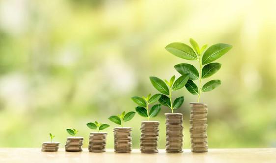 Thị trường tài chính xanh tại Việt Nam: Thực trạng, kinh nghiệm quốc tế và giải pháp