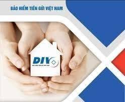 Bảo hiểm Tiền gửi Việt Nam - Phát huy nội lực vững bước phát triển