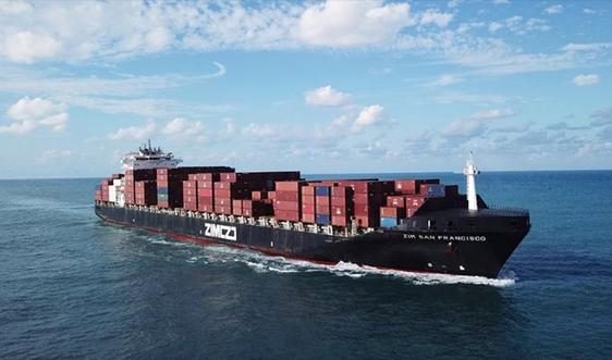 Liên minh hàng hải và khủng hoảng thị trường vận tải container quốc tế